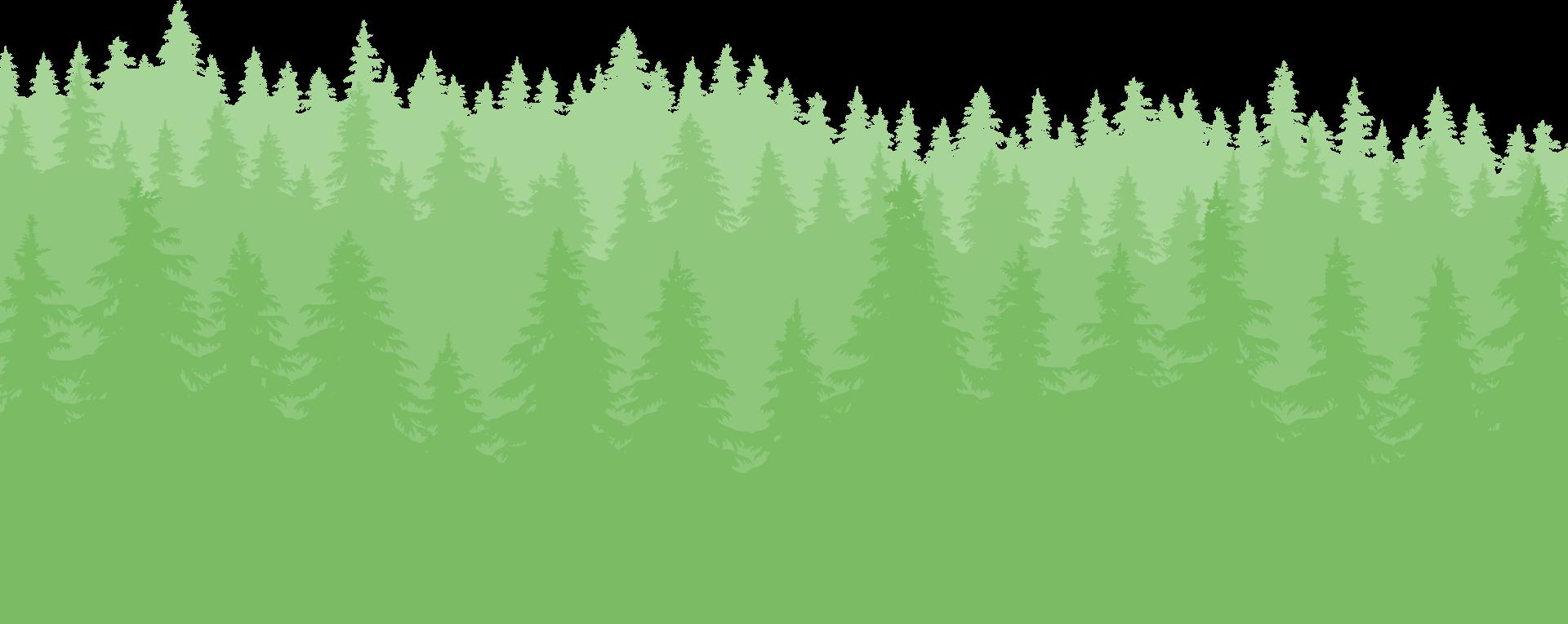 vSign green bg